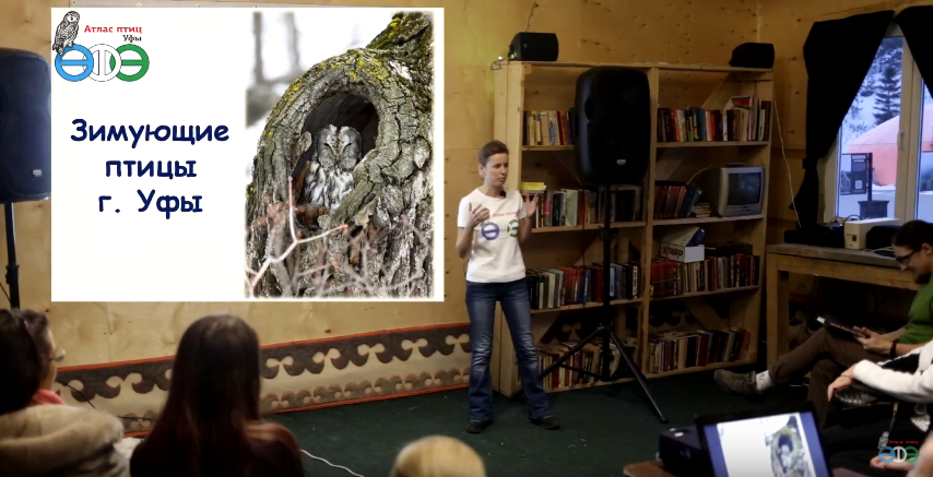 Видеолекция о зимующих птицах Уфы и их видовом определении