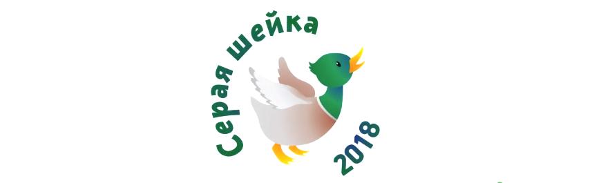 Первая регистрация морянки и свиязи на зимовке в Башкирии