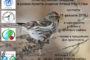 Итоги акции «Серая шейка-2018» в Башкирии