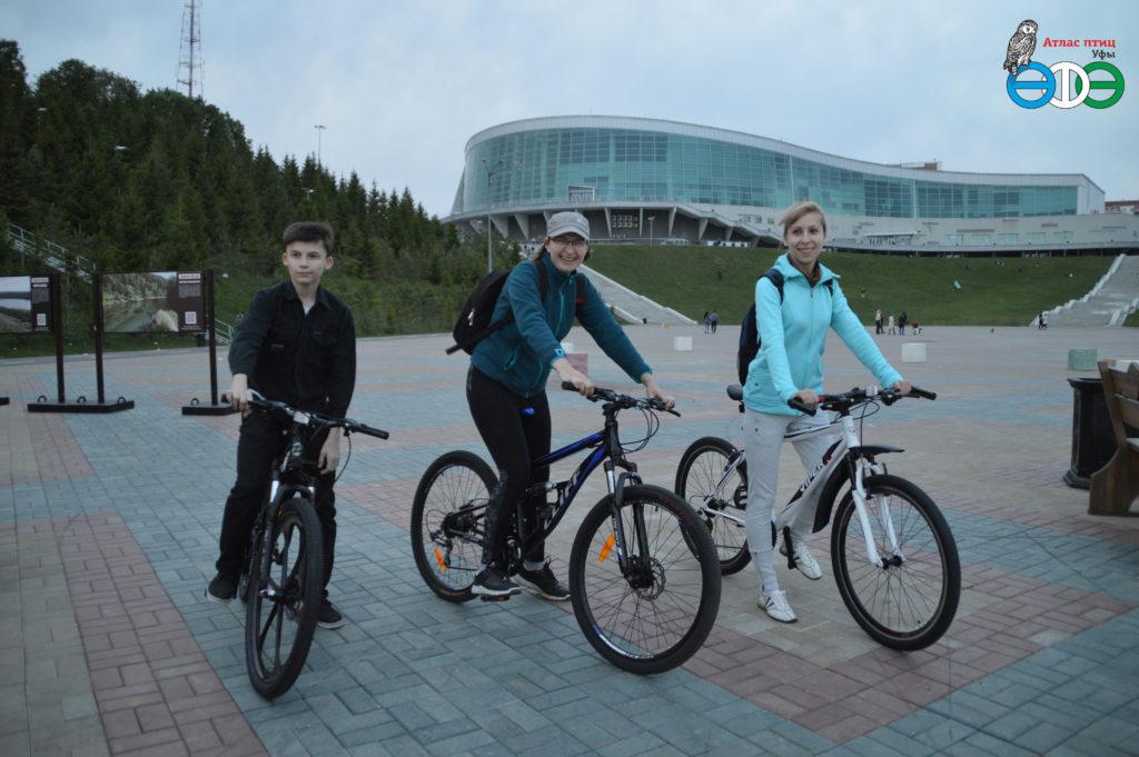 Велосипедный соловьиный квест