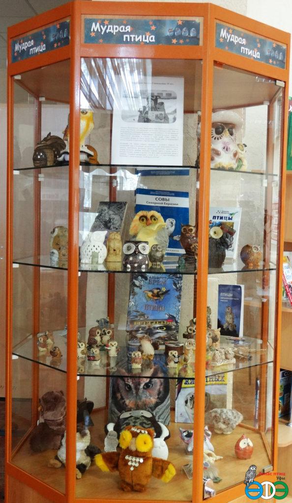 Выставка коллекции сов