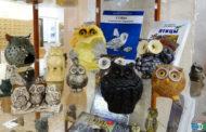 Выставка «Мудрая птица: совомания» в Центральной городской библиотеке г. Уфы