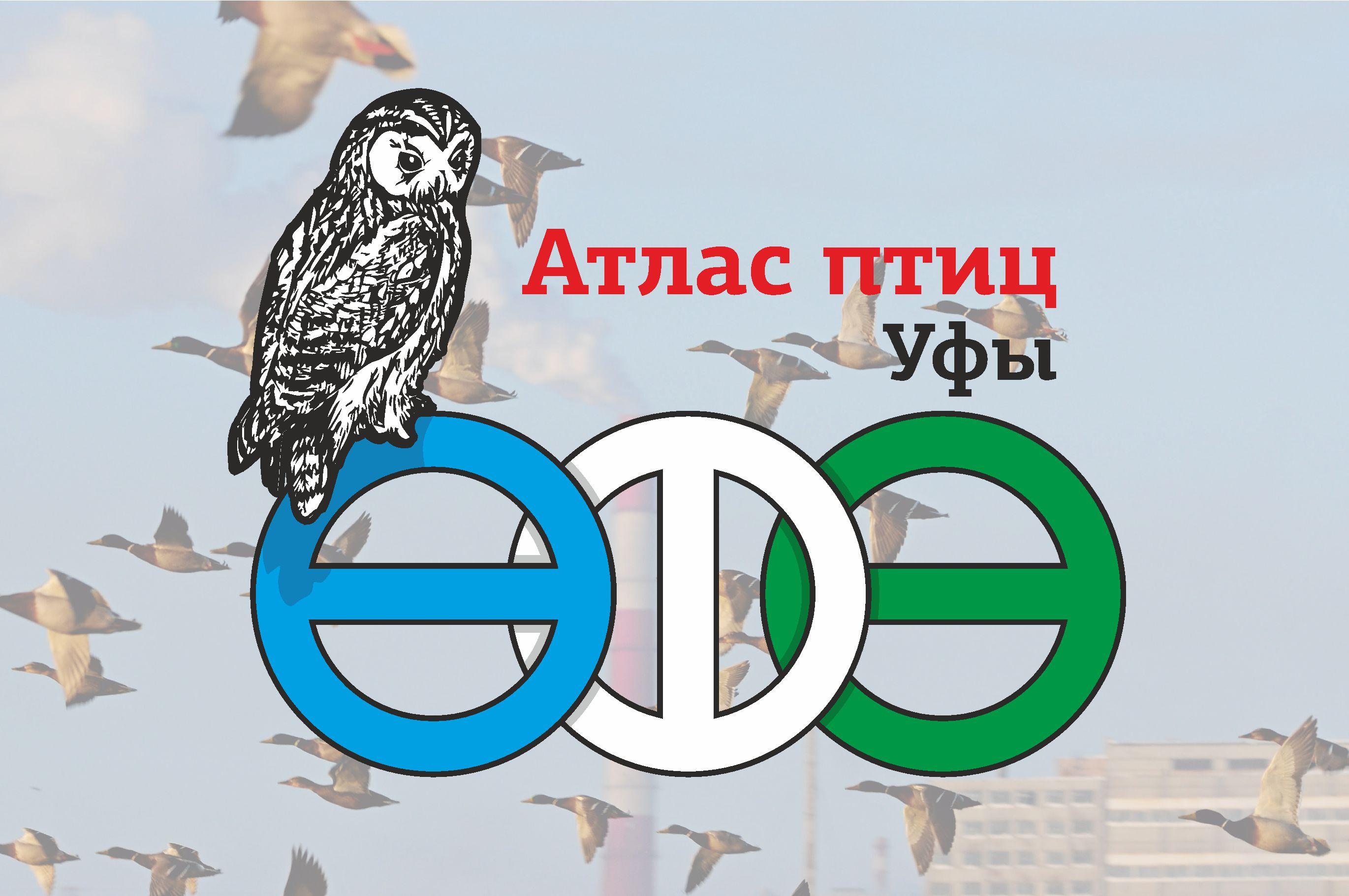 Проект создания Атласа птиц города Уфы – итоги сезона 2017-2018 гг.
