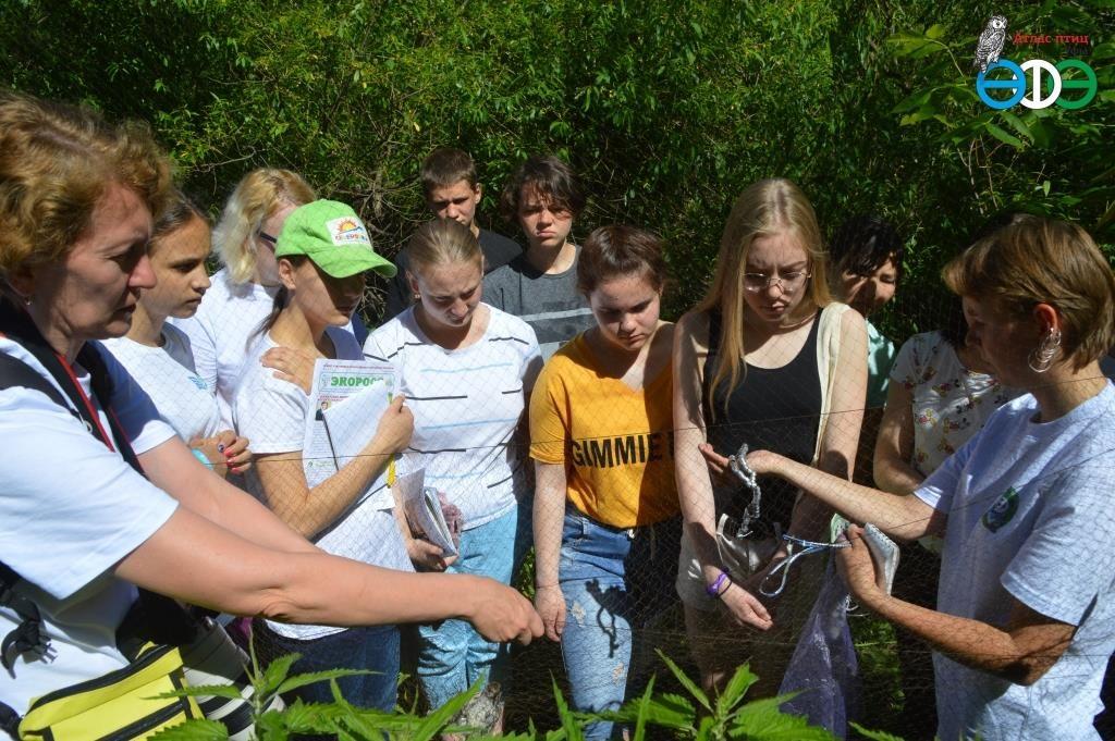 Слёт юных экологов