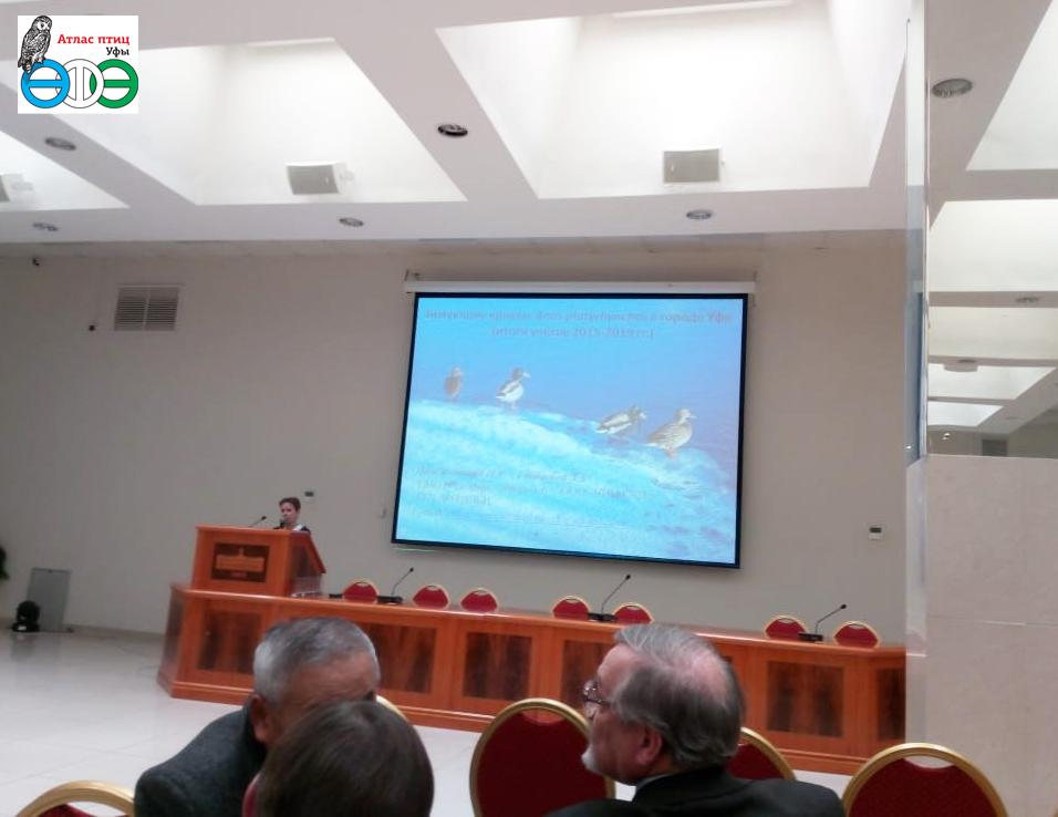 Доклад о зимующих уфимских кряквах на научно-практической конференции в Москве