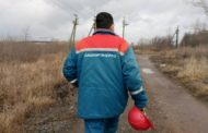В Башкирии энергетики потратили 69 млн. рублей на защиту птиц на ЛЭП