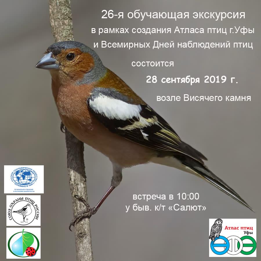 26-я обучающая орнитологическая экскурсия в Уфе