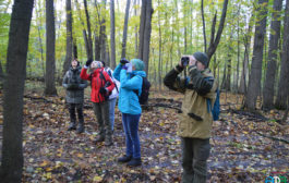 Орнитологическая экскурсия в Уфе 28 сентября