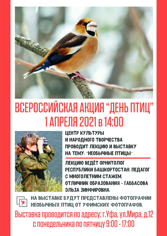 Лекция и выставка Необычные птицы