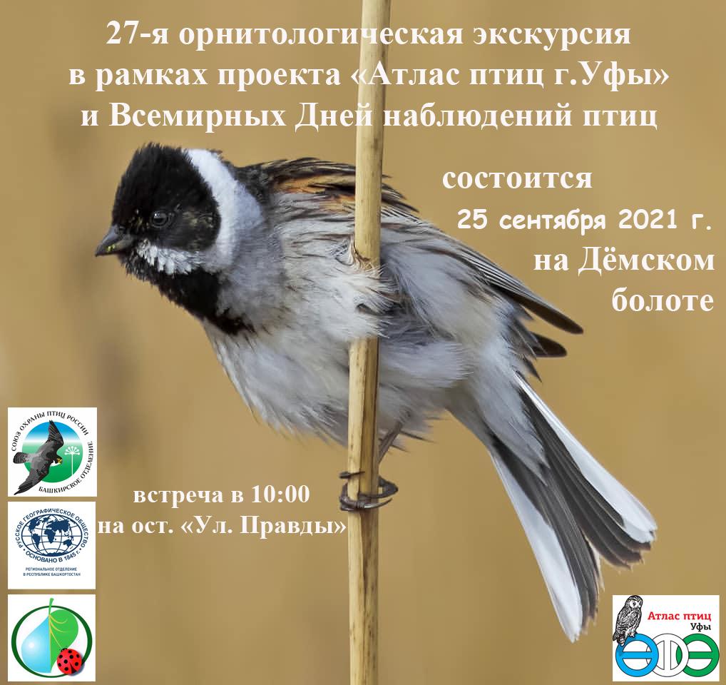 27-я орнитологическая экскурсия в Уфе